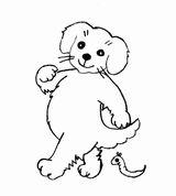 dog-img048